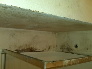 this is how the bathroom walls and ceiling looked when we arrived.